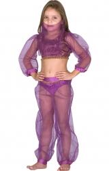 Fantasia Princesa da Arábia Luxo