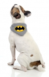 Bandana Batman - Super Pet