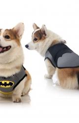 Colete Batman Luxo