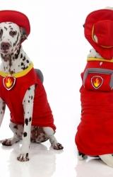 Colete Marshall Patrulha Canina